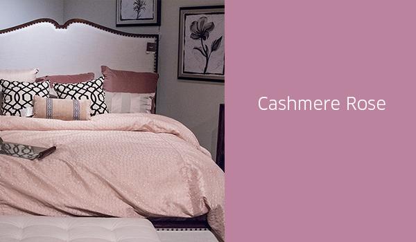 CashmereRose_1