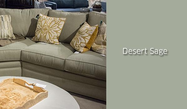 DesertSage_1