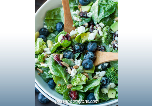FOOD-Blueberry-Broccoli
